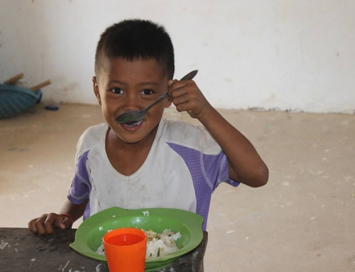 Tarantulas: A Cambodian Delicacy
